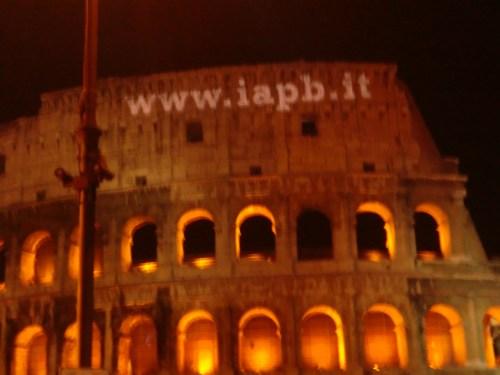 coliseo romano publicitario.jpeg