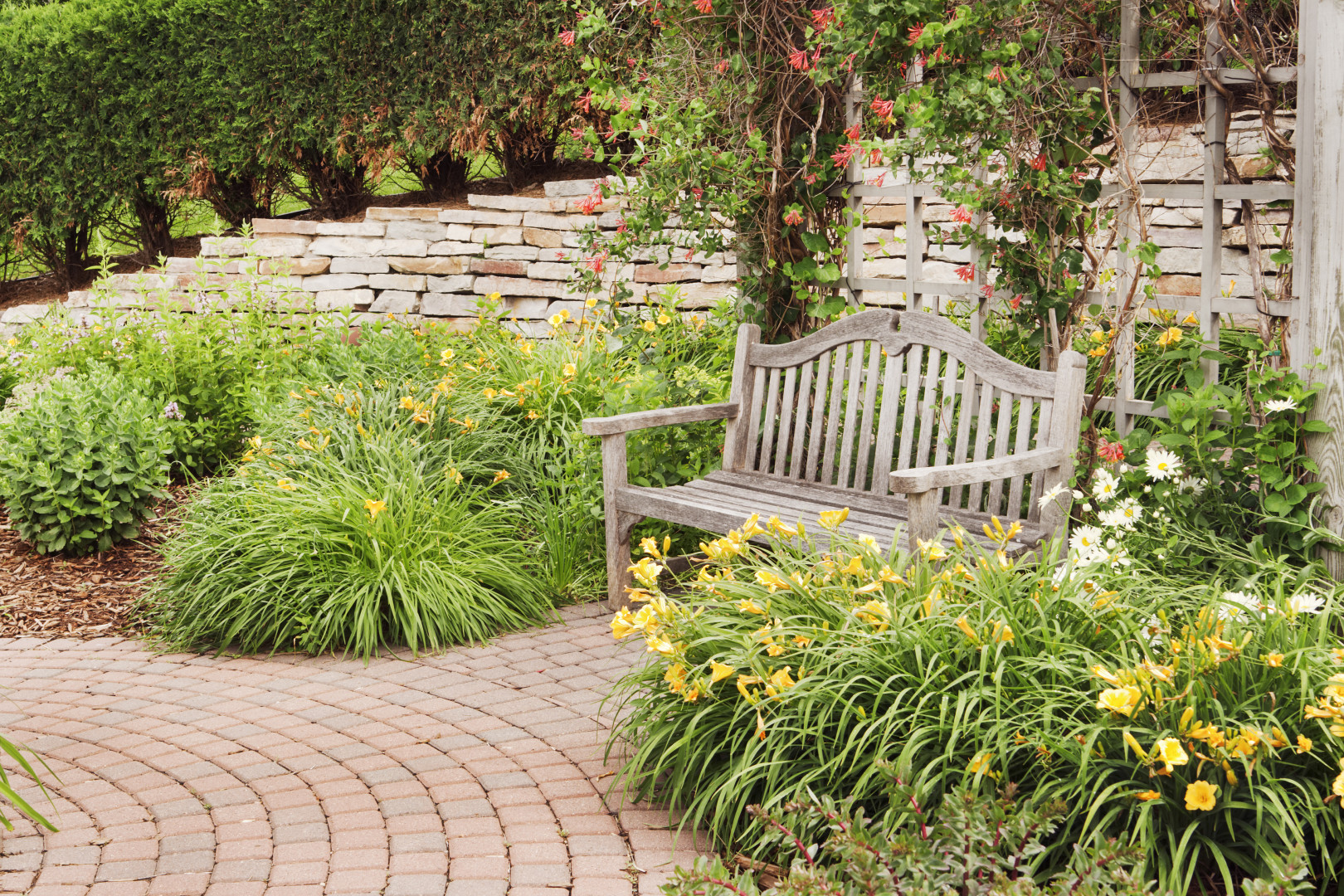 Supple Drought Tolerant Landscaping Drought Tolerant Landscaping Pacific Residential Mortgage Drought Tolerant Landscape Design Drought Tolerant Landscape Plants houzz-02 Drought Tolerant Landscape