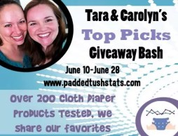 Tara and Carolyn's Top Picks Giveaway Bash