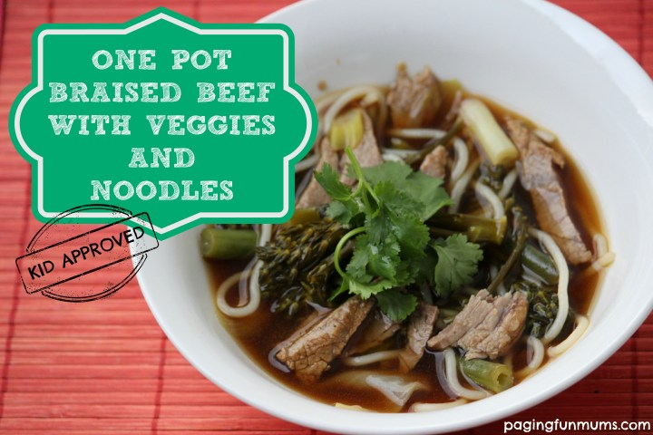 One Pot Braised Beef with Veggies and Noodles