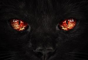 monster fear2