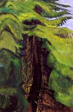 emily-carr-artwork-cedar