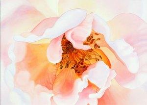 063009_marney-ward-artwork