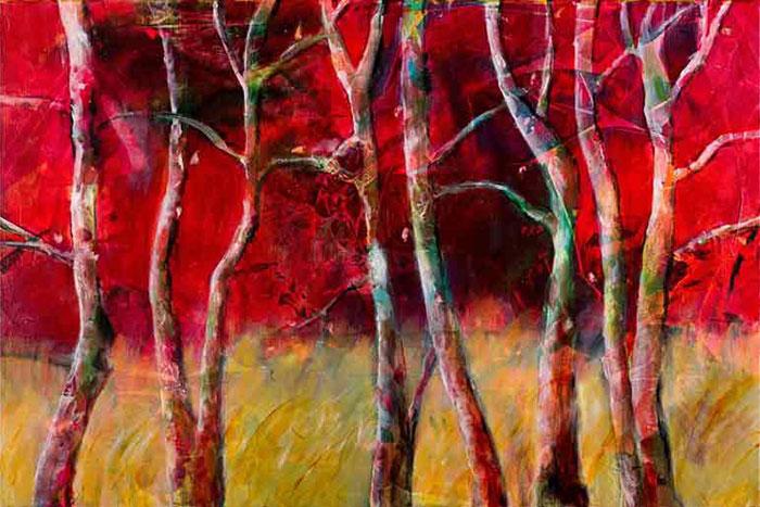 A Walk in the Woods by Vae Hamilton, Conover, North Carolina, USA