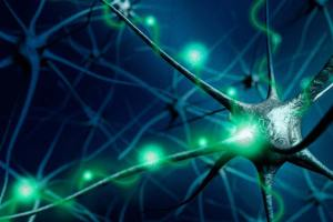 neural-activity_brainMRI