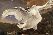 Jan-Asselijn_Threatened-Swan_1650