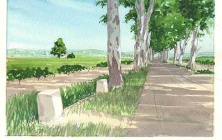 road-to-neffies-painting-in-france-feature