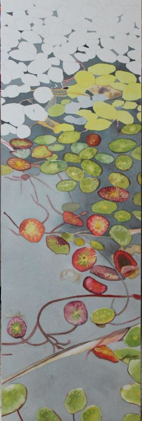 I am also adding a darker outline on some areas of the lily pads