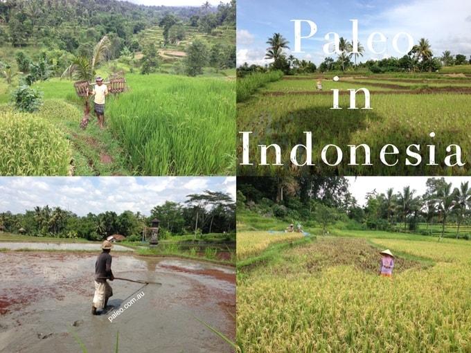 Indonesia-Paleo-Diet-The-Land-680x450-min
