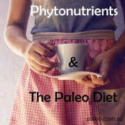The Paleo Diet Phytonutrients Anthocyanins Catechins-min