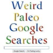 Weird paleo google searches paleo network-min