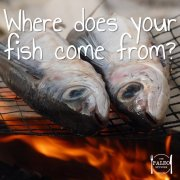 Where Does Your Fish Come From Australia New Zealand paleo diet frozen-min