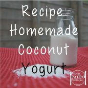 Recipe homemade coconut yoghurt paleo network-min