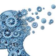 Brain-wheels-canstock-800x579