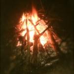 11月23日(土曜)あしたの森でたき火しながら太鼓でジャンジャンがあるって!