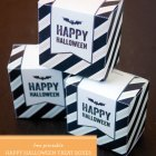 Free Printable Halloween Treat Boxes