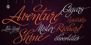 Ministry Script Font by Sudtipos