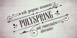 Polyspring Font by Pintassilgo Prints