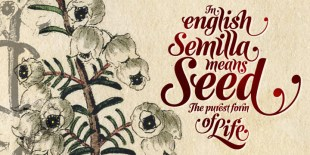 Semilla Font by Sudtipos