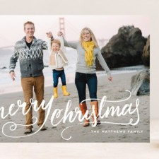 Winter Brush Holiday Photo Cards