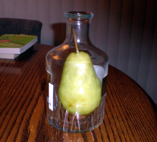 real pears inside the liquor bottle