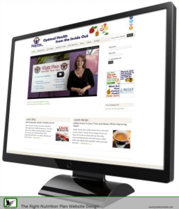 wordpress-website-design-257x3004