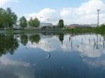 Bassin principal... toujours pas une piscine ;-)