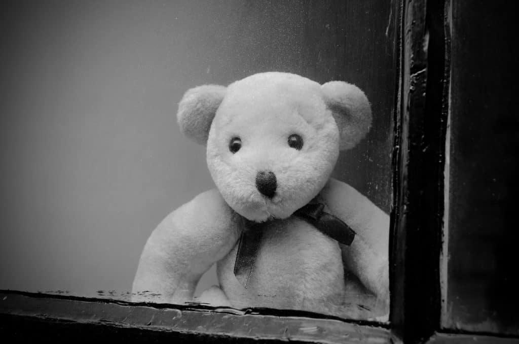 ours abandonné