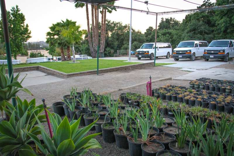Large Of San Gabriel Nursery