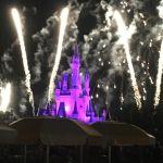 Disney World Orlando Florida con sus fuegos artificiales cada noche!hellip