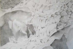 pencil drawing falls 2016 catalog