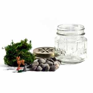 acme_terrarium_kit_large