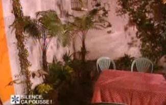 terrasse tropicale ombre à paris