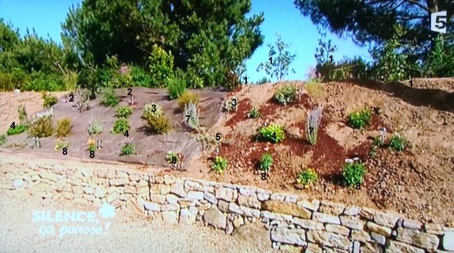 aménagement jardin en pente climat océanique