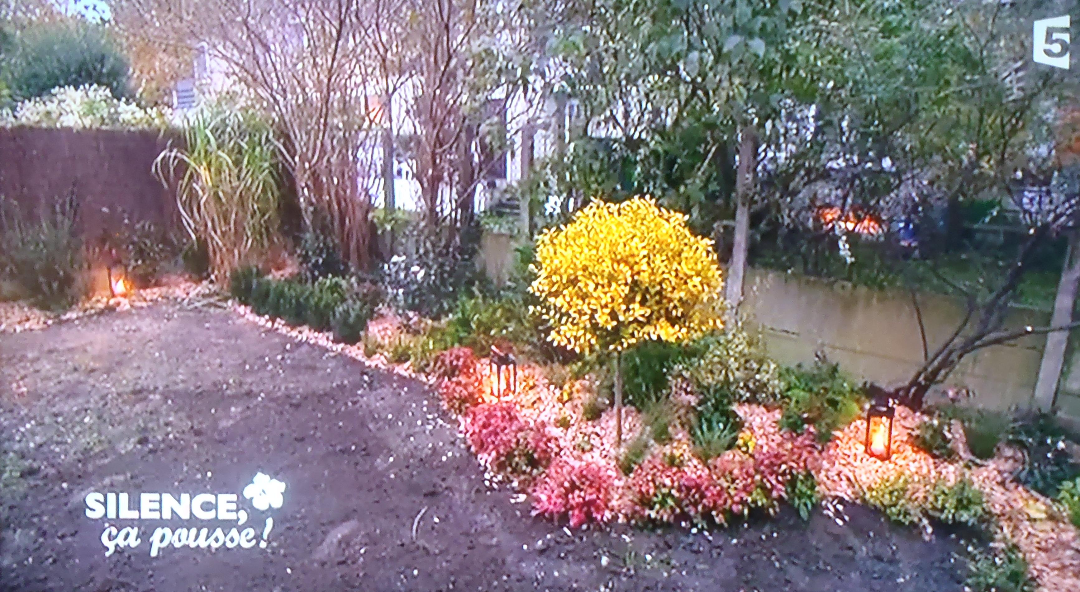 Un petit jardin l anglaise paris pas de panique for Jardin a l anglaise photos