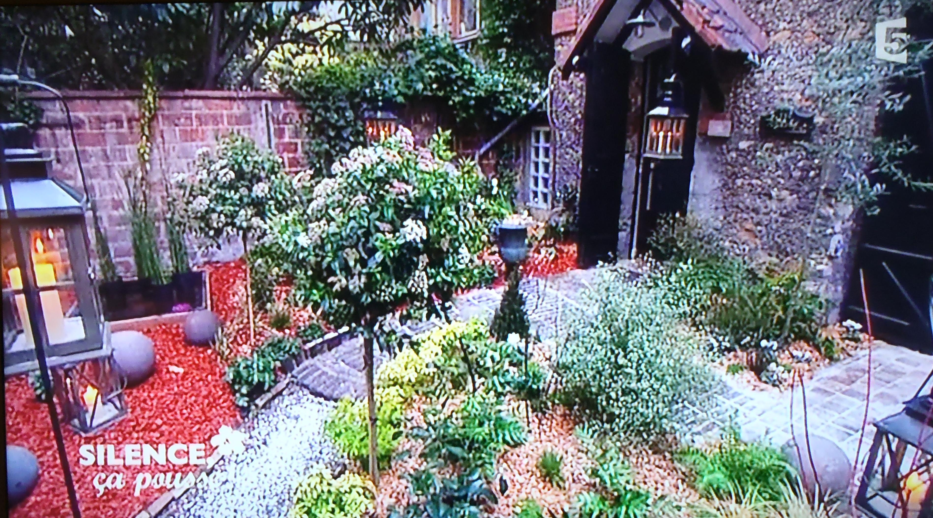 am nager un petit jardin franco anglais d ombre en r gion. Black Bedroom Furniture Sets. Home Design Ideas