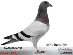 DV-08067-16-769 MINI