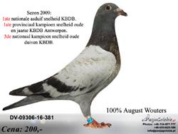 DV-09306-16-381 MINI