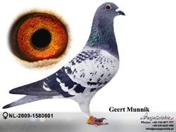 NL-2009-1580601 MINI