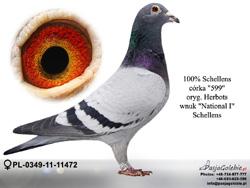 PL-0349-11-11472 MINI