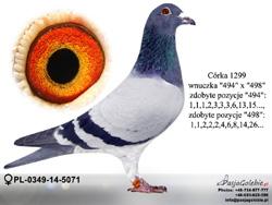 PL-0349-14-5071 MINI