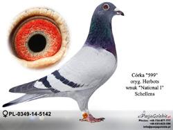 PL-0349-14-5142 MINI
