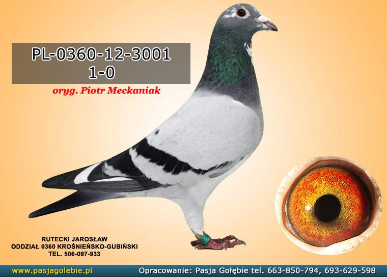 PL-0360-12-3001