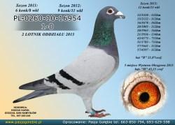 PL-0260-10-16954