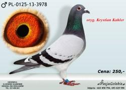 PL-0125-13-3978