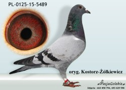 RODOWOD-PL-0125-15-5489