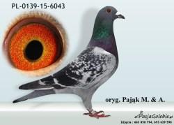 RODOWOD-PL-0139-15-6043