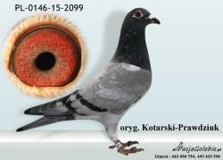 RODOWOD-PL-0146-15-2099