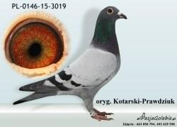 RODOWOD-PL-0146-15-3019