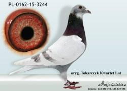 RODOWOD-PL-0162-15-3244
